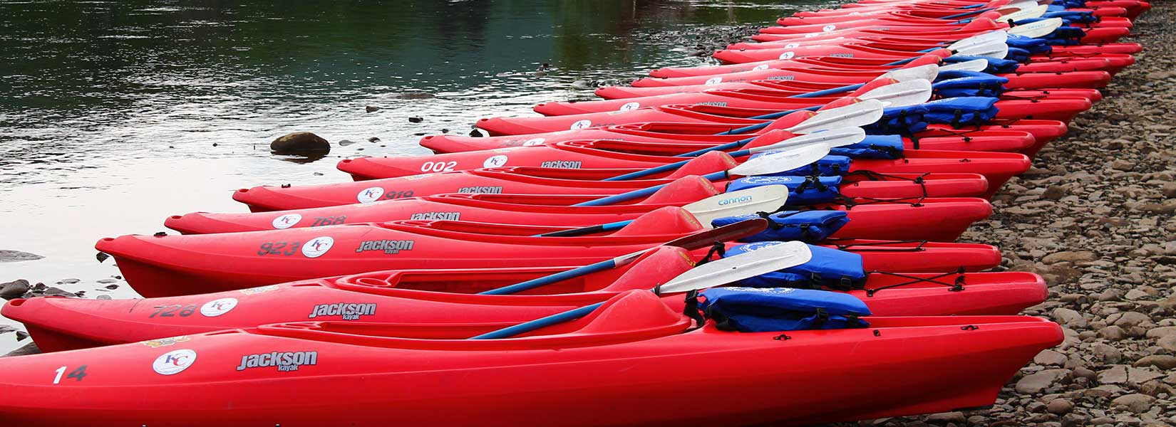 Kayaks lined up on shore banner